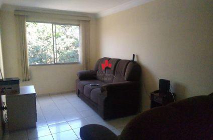 Apartamento para Locação - Vila Ivone